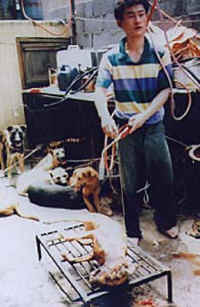 http://zhestokosti.net/abuse/images/dog-meat-20_small.jpg